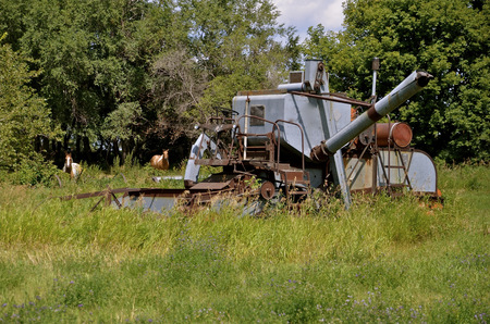 resides: With several horses in the background, an old self propelled combine resides in a field of long grass