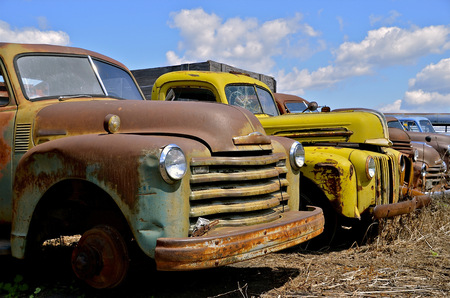 A row of rusty old pickups are parked in a row in a junkyard
