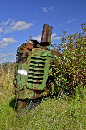 old tractors: From end of an old tractors is partially hidden by shrubs