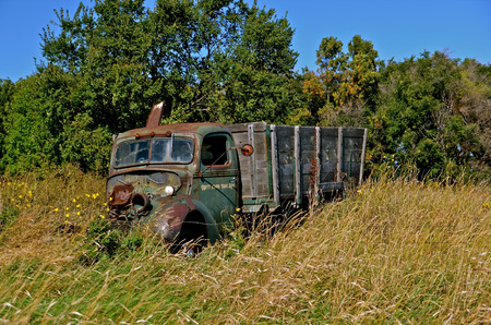 junked: Junked old ton sized grain truck is left parked in the long grass