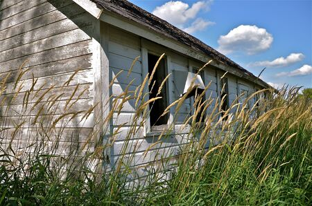 brooder: A side view of an old chicken house surrounded by very long green grass Stock Photo