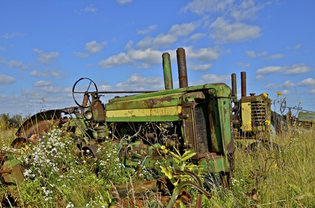 old tractors: Several old tractors are surrounded by tall grass and weeds in a junkyard Stock Photo