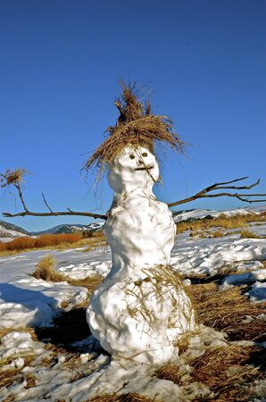 Spring Snowman with stick arms and grass hat