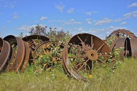 scrap iron: Huge steel wheels from steam engines and large large machinery are stacked in a pile surrounded by weeds and long grass