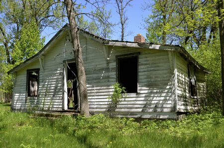 deteriorated: Old shack in the woods is falling into ruins