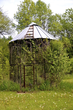storage bin: Metal corn bin stands empty with surrounding brush and shrubs
