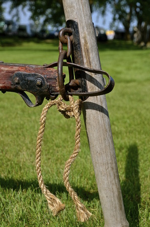 The clevis of a hitch is supported by the single tree to be pulled by horses. Stock Photo