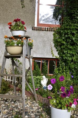 Una vieja escalera de madera está decorado con cacerolas esmaltadas llenos de flores Foto de archivo - 43840736