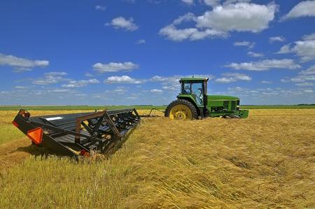john deere: A new John Deere tractor is pulling a swather in a golden field of wheat