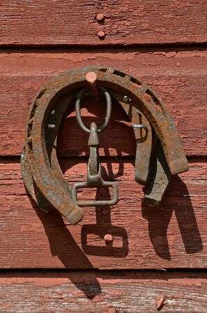 rusty nail: Several old rusty horse shoes and a harness snap hang from a nail on the red siding of an old building.