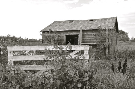 barn black and white: An old wooden shed or barn is surrounded by a fence and gate. Black and White