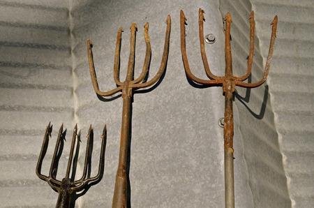 tine: Rusty old handmade fishing spears Stock Photo