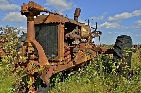 corroded: The steering mechanism is exposed on a rusty old tractor  and surrounded by weeds and wild flowers.