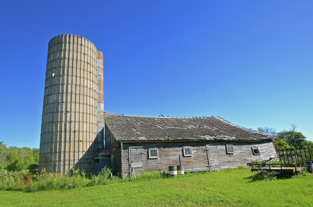 roofless: A roofless silo and weathered old deteriorating barn provide memories of a former dairy operation.