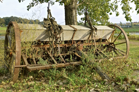 seed drill: An old grain drill with a seed box is surrounded by weeds and long grasses.