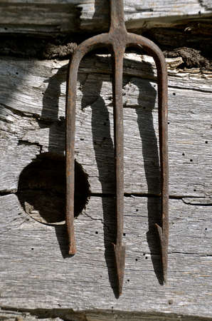 fishing cabin: A three tined fishing spear leans against a log cabin wall with a hole Stock Photo