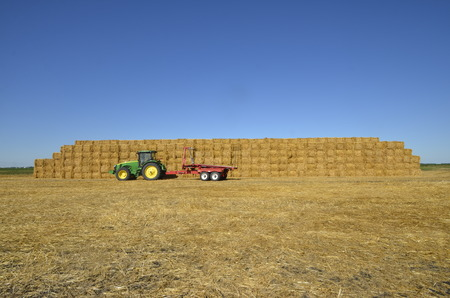 john deere: Mayville,North Dakota, August 19, 2015; A John Deere pulling a bale trailer is a product of John Deere Co, an American corporation that manufactures agricultural, construction, forestry machinery, diesel engines, and drivetrains