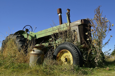 An old rusty milk can stand in font of a vintage tractor surrounded tall grass and weeds.