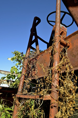 propelled: A rusty old ladder surrounded by weeds and vines reach up to the seat and steering wheel of an rusty help propelled combine. Stock Photo