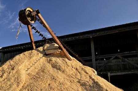 auger: A mound of sawdust has accumulated underneath an auger transporting the material from a sawmill Stock Photo