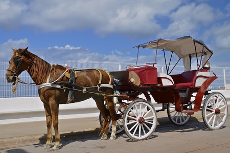 cozumel: A solitary horse and carriage is waiting to transport tourists in the island of Cozumel Stock Photo