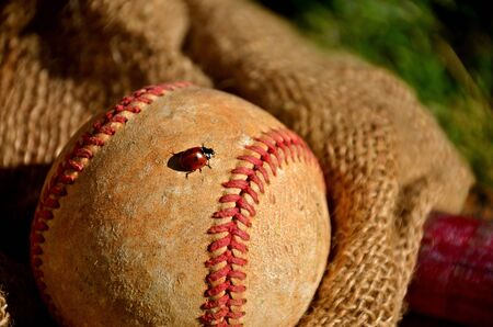 outfield: A lady bug crawl between the red seams of an old baseball laying on a gunny sack Stock Photo