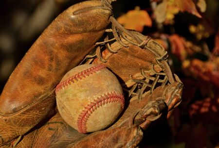 outfield: An old scuffed baseball lies deep in the pocket of a vintage glove.