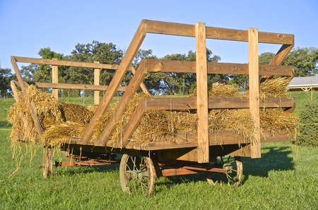 An old steel wheeled wagon is partially loaded with bundles of oats ready for threshing.