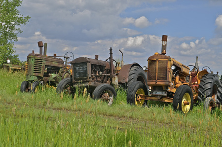 lugs: Old rusty tractors are lined up in a junkyard