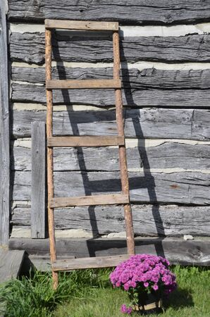 Old wood ladder leans against a log cabin wall. Stock Photo