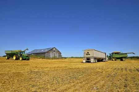 deere: MAYVILLE, NORTH DAKOTA-August 19, 2015: A harvest scene of a tractor and grain cart cart,  products of John Deere Co, an American corporation that manufactures agricultural, construction, forestry machinery, and diesel engines.