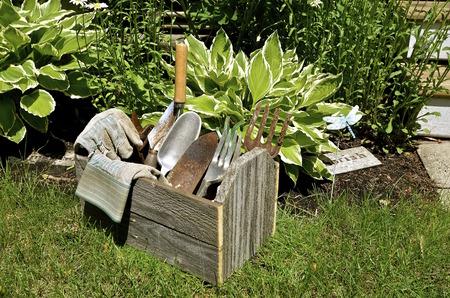 麦わら帽子、手袋、ツールの庭師のボックスが植物のベッドの次に位置します。