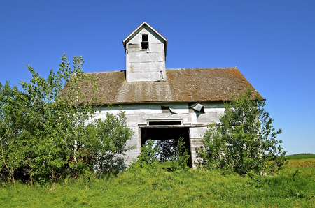 granary: An abandoned small granary or elevator with an open door is surrounded by volunteer bushes.