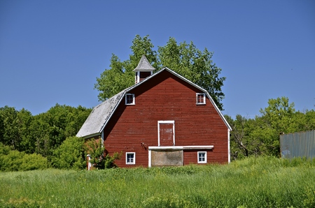 An old red hip roof barn with a cupola and hay loft is surrounded by growing bushes and long grass.