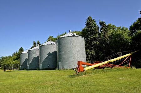 storage bin: Grain bins and a tube elevator along a farm tree line Stock Photo