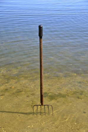 tine: A pitchfork in the water for cleaning lake weeds of a swimming area is standing upright in the sand near the shore