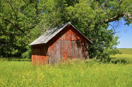 outbuilding: Old  abandoned red shed in a meadow of long grass. Stock Photo