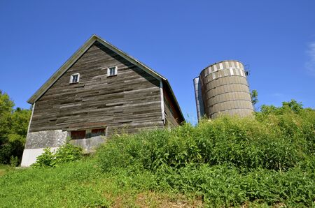 Foliage and weeds grow around an old weathered barn and silo