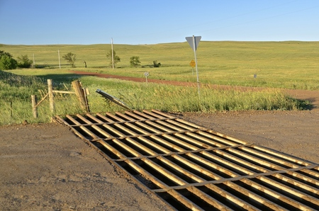 cattle grid: A metal grated cattle guard crossing in the western prairies