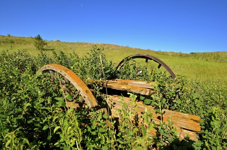 disrepair: An old wagon trailer with wooden wheels is buried in the long grass is in a state of disrepair. Stock Photo