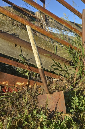 rancher: An old rusty wooden handled spade leans against a weed covered cattle loading chute