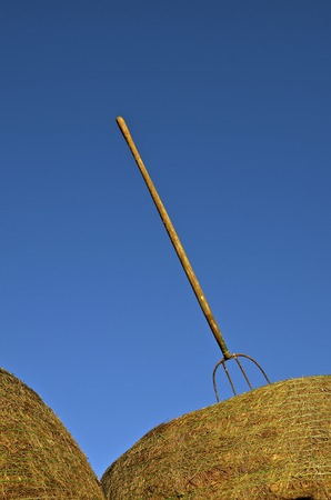 A three tined pitch fork is sticking into a huge round bale of straw. Stock Photo