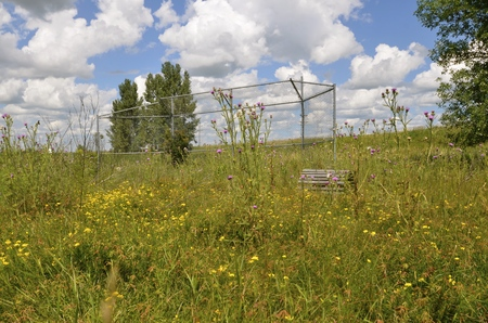 backstop: A former rural baseball is forgotten, neglected with only the backstop as former evidence of the athletic field.