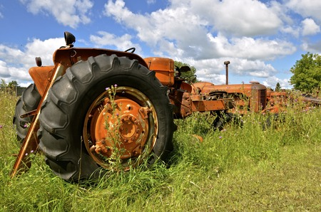 Old orange tractors left in a salvage and junkyard  are surrounded by long grass and weeds.