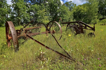 Several old abandoned rusty side delivery rakes are in a pasture.
