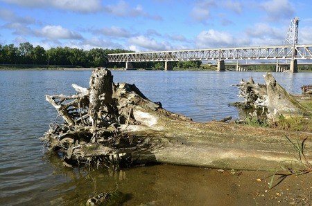Huge cottonwood logs have washed on shore with the retired two tiered bridge of Yankton SD as it spans the in the Missouri River in the background.