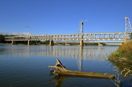 Een reusachtige populier van cottonwood is aan de wal gewassen met de gepensioneerde tweelaagse brug van Yankton SD, terwijl deze de Missouri River op de achtergrond overspant.