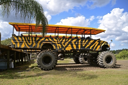 A converted school  serves as a swamp buggy in a tropical setting