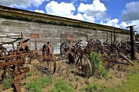 A row of very old rusty farm equipment includes hay mowers and cultivators.