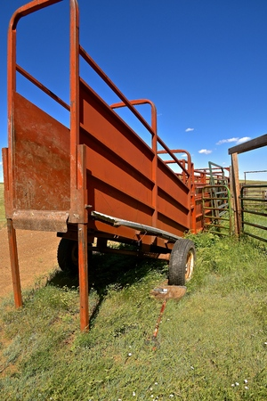 A portable loading chute for beef cattle is adjacent to a coral at a western ranch.